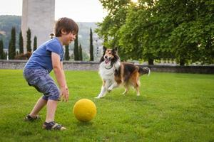 Young boy playing with a dog in the park photo