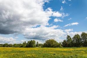 cielo nublado sobre pradera foto
