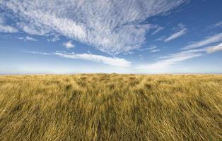 Simple horizon on a blue sky
