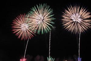 fuegos artificiales tradicionales japoneses en el cielo nocturno