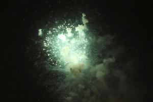 Colorful firework in the black night sky
