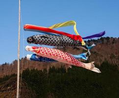 Koi flags with blue sky, Japan photo