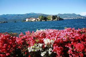 Isola Bella under blue sky Stresa Waterfront blooming