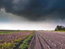 campo cosechado bajo cielo tormentoso