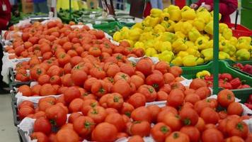 as pessoas escolhem tomates vegetais no supermercado