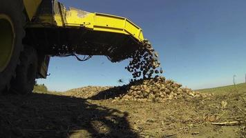 Sugar Beets Harvesting Machine Unloading video