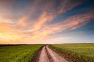 Disparo horizontal de una hermosa puesta de sol sobre campos ucranianos