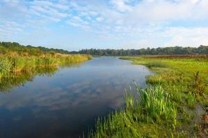 orilla de un lago bajo un cielo nublado azul