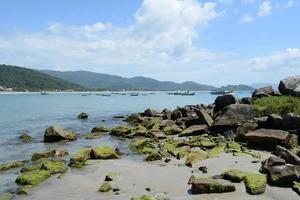 playa, sol y mar foto