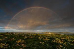 Rainbow Sunrise photo