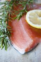 Fresh salmon photo