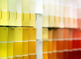 Paint Color Samples photo