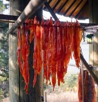 Row of king salmon fish meat drying in Native American lodge photo