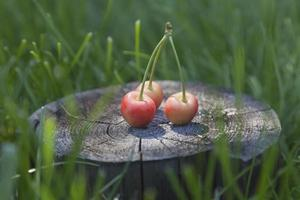 Summer cherries at wood
