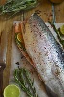 Fresh trout photo