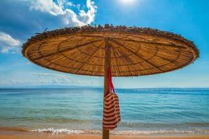 palm tree umbrella with bag photo