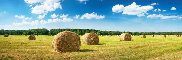 Hay bales with blue sky and fluffy clouds