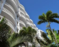Palm trees and Florida hotel photo