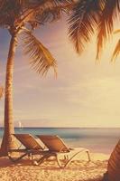 art Deckchairs in tropical beach photo