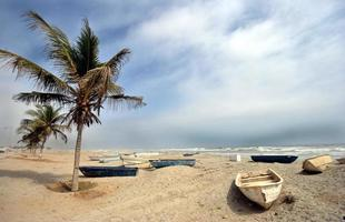 Fishing boats on beach, Salalah, Oman