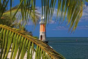 Lighthouse through palmtrees