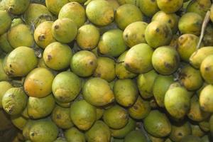 Bunch of Betel-nut