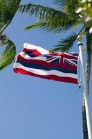 Hawaii state flag on pole with palm trees photo