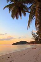 Rope swing on tropical beach photo