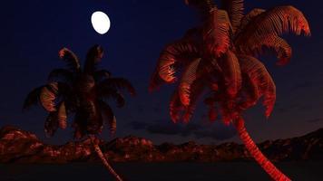 paraíso en la isla de Hawaii foto