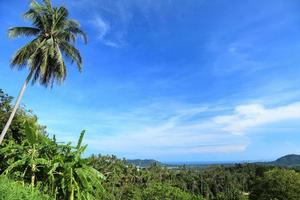 Koh Samui panorama photo