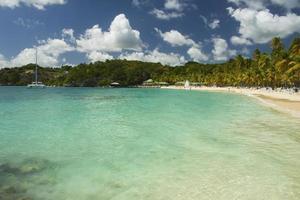 Playa La Caravelle, Guadalupe, Caribe foto