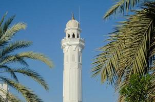 Minaret with palm trees