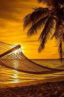Hammock with palm trees on a beautiful beach at sunset photo