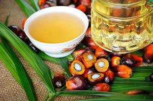 Oil palm fruits with cooking oil photo