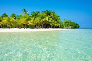 Paradise Beach on beautiful island South Water Caye - Belize photo