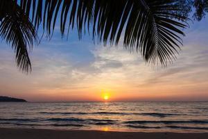 hermosa puesta de sol tropical con palmeras.