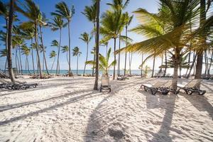 amanecer caribeño foto