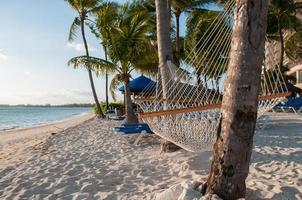 hamaca en la playa foto