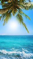 Tropical Heaven photo