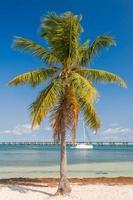 The yacht in the bay of Bahia Honda Key photo