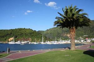 Picton photo