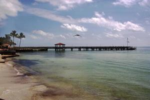 muelle de playa foto