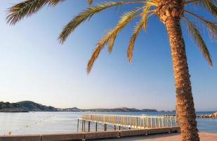Morning Sunrise in Majorca photo