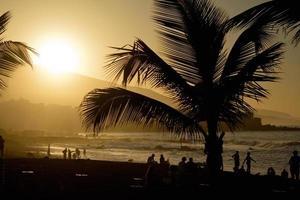 Sunset at Playa Jardin, Puerto Cruz, Tenerife photo