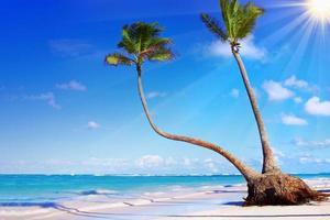 Caribbean Dream beach . photo
