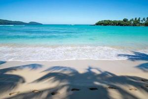Footsteps in palm trees shadow on perfect tropical beach photo