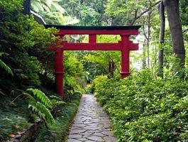 Japanese Torii gate and the stone pathway in  Zen garden