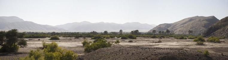 Kaokoland game reserve in Namibia photo