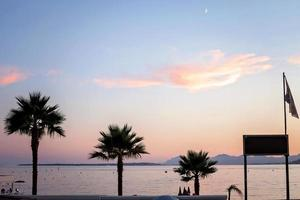 Sunset with palms in Juan Les Pins, France