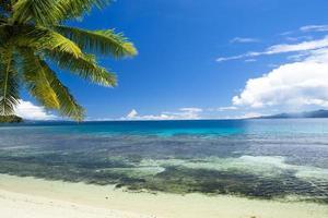 Tropical beach paradise photo